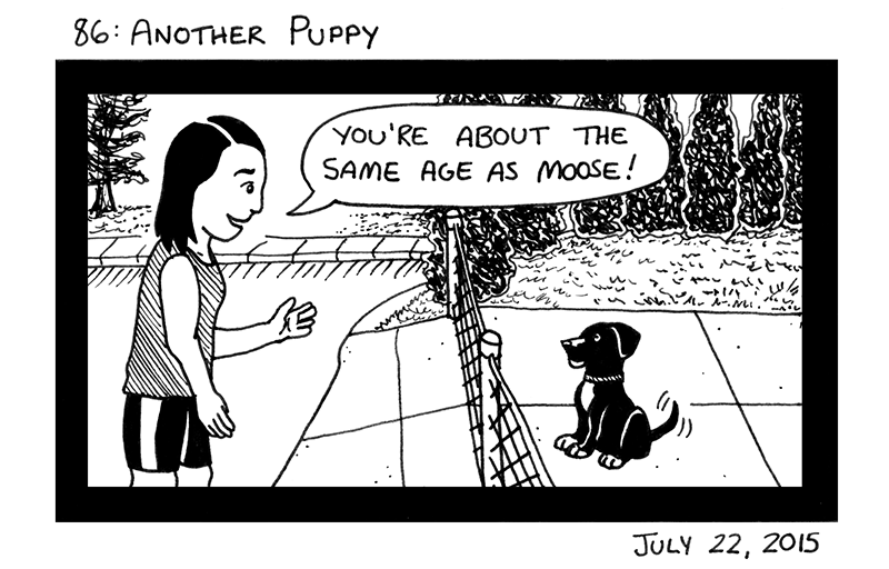 Another Puppy