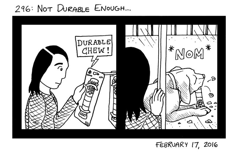 Not Durable Enough...