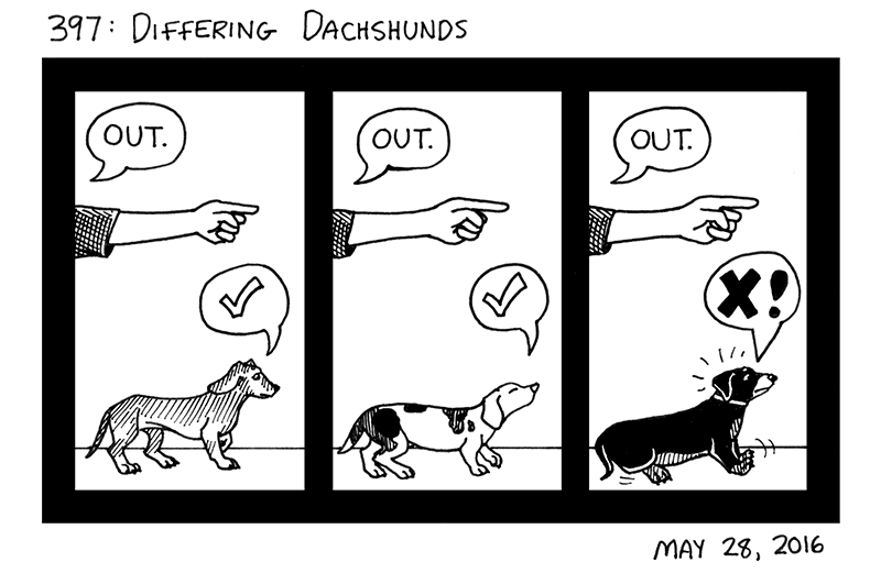 Differing Dachshunds