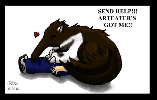 Send Help