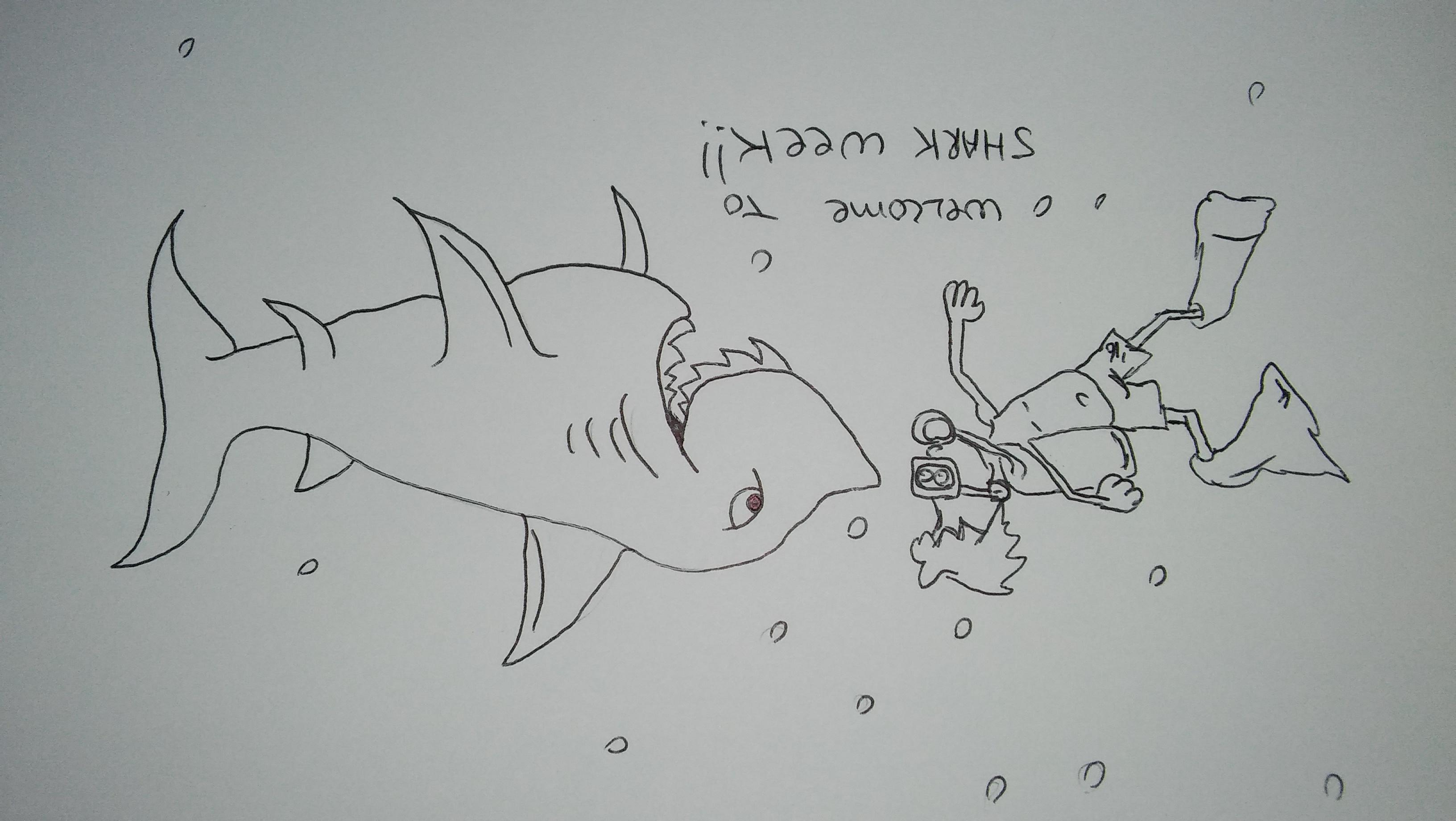 Its shark week. You watching?