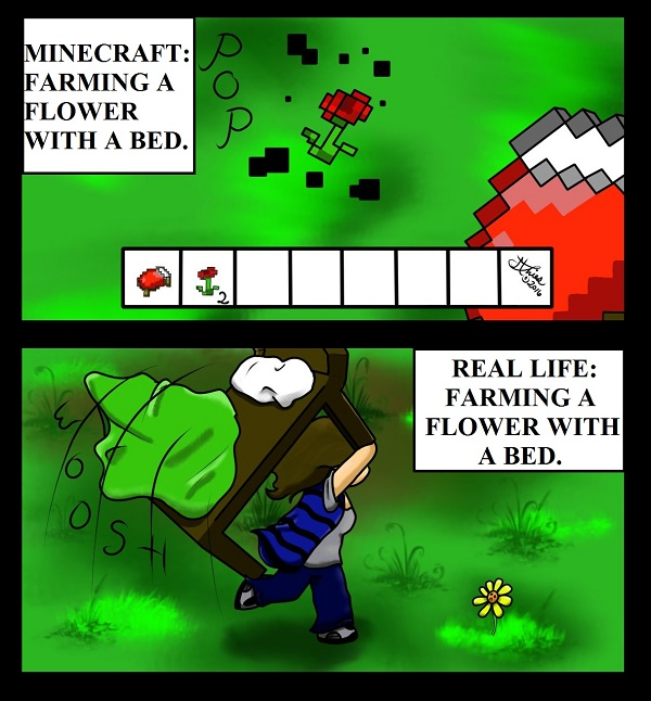 Minecraft Vs. Real Life