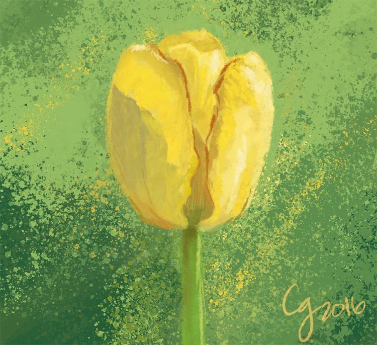 BCW: Tulip