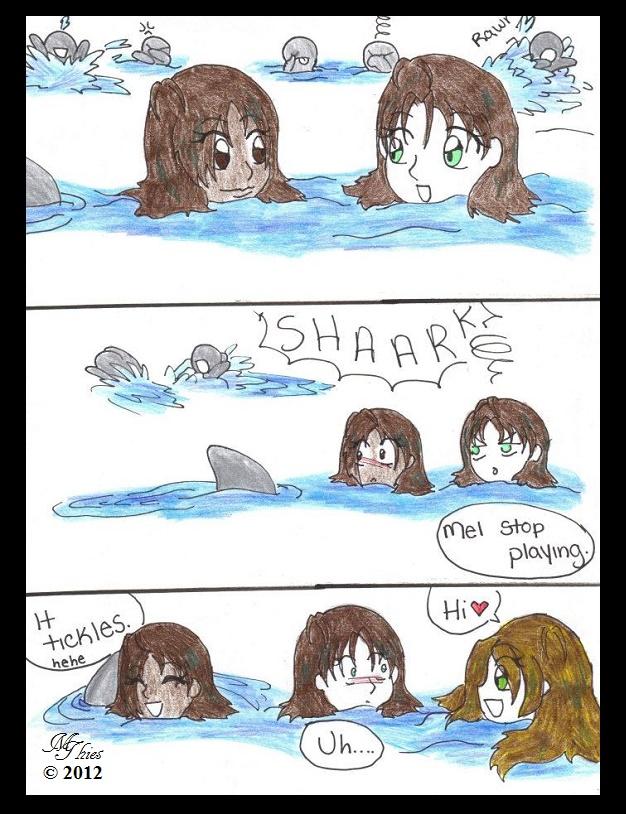 Vicious Shark Attack