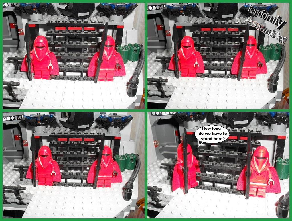 #665-Patient guards