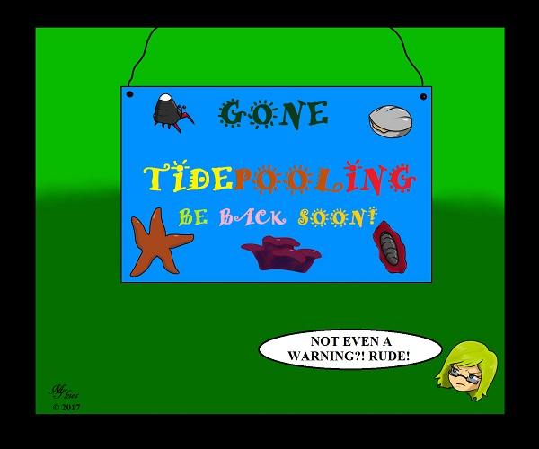 Gone Tidepooling