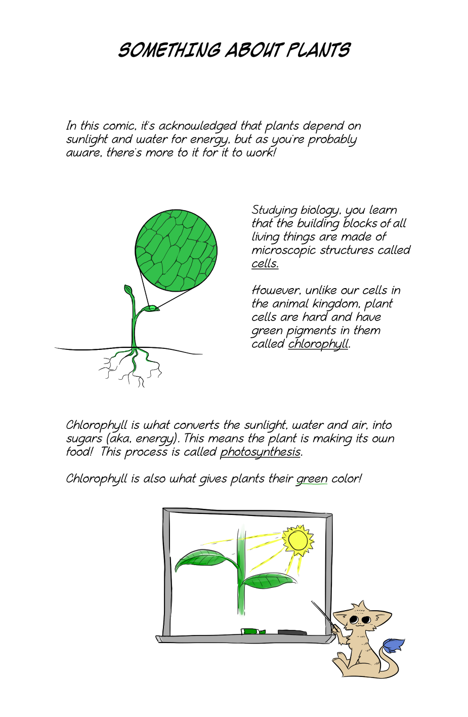Something About Plants (Extra)