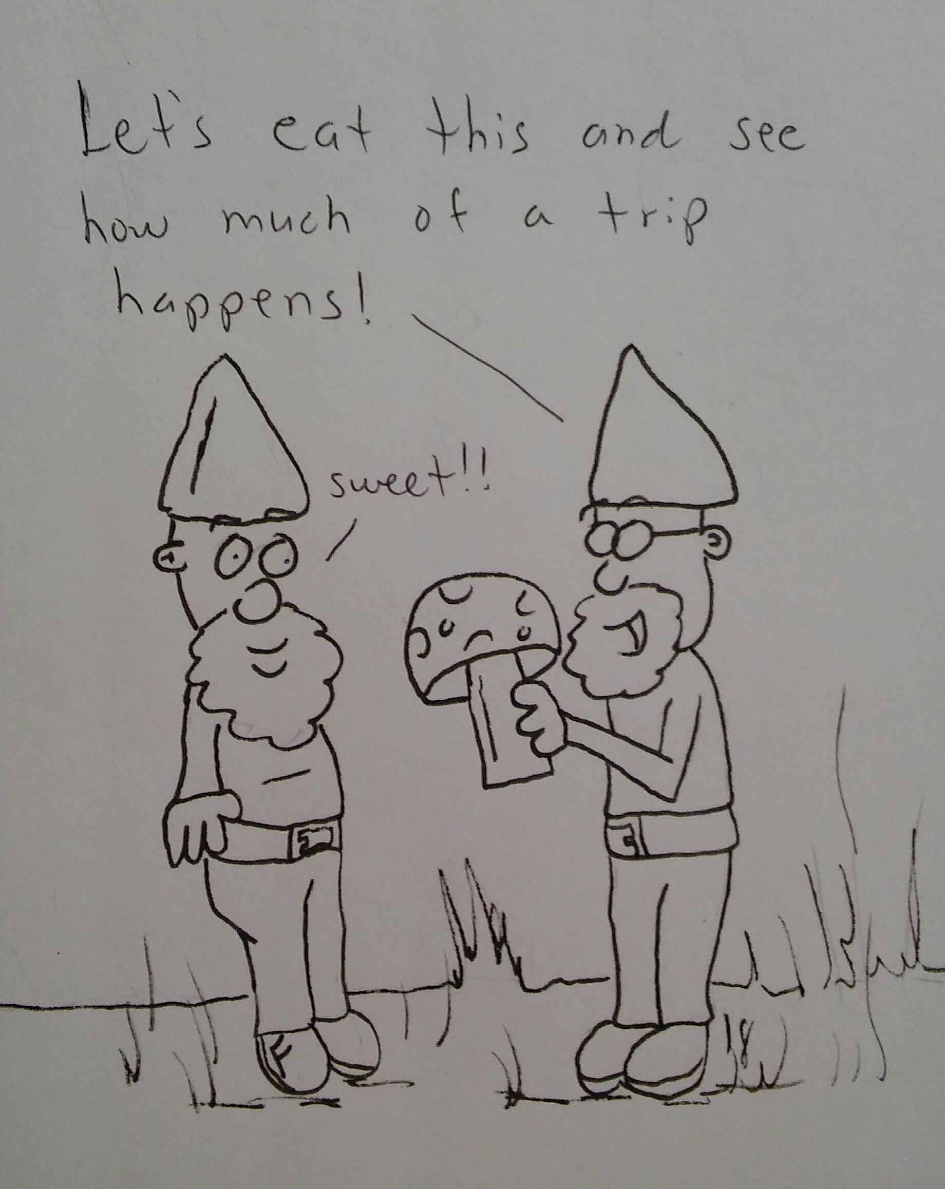 Gnome adventures
