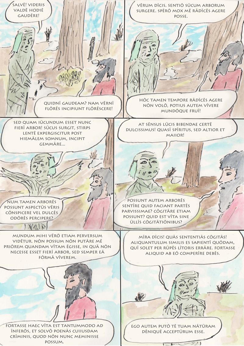silvae 8
