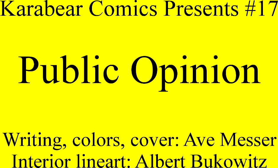 Issue 17: Public Opinion - Inside cover