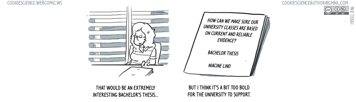 808 - A bachelor thesis we don't want to see