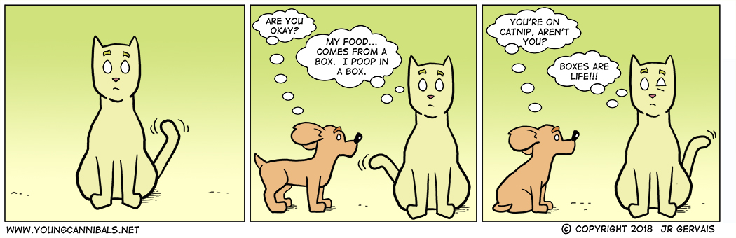 If You Don't Talk to Your Cat, Who Will?