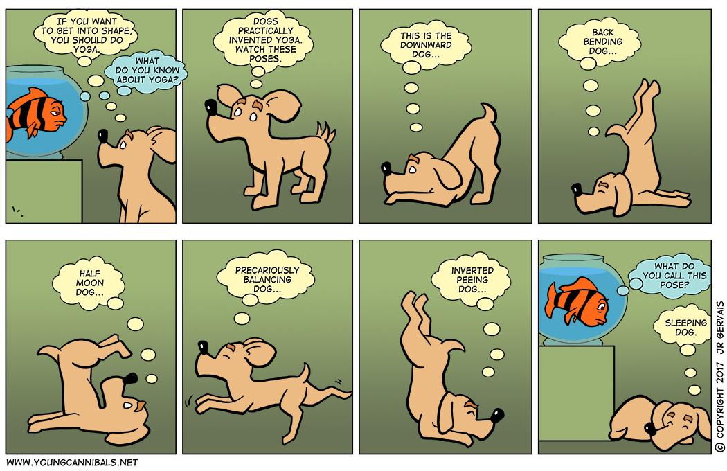 Dogs Doing Yoga