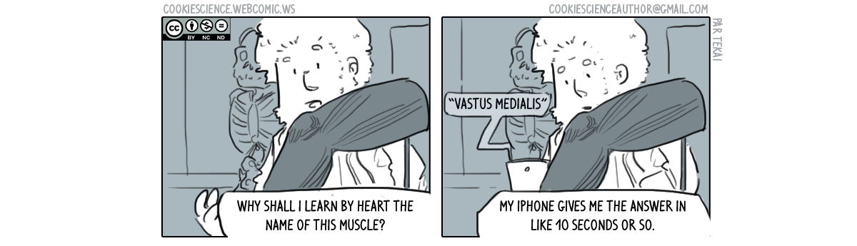 384 - Learn by heart what you don't need to