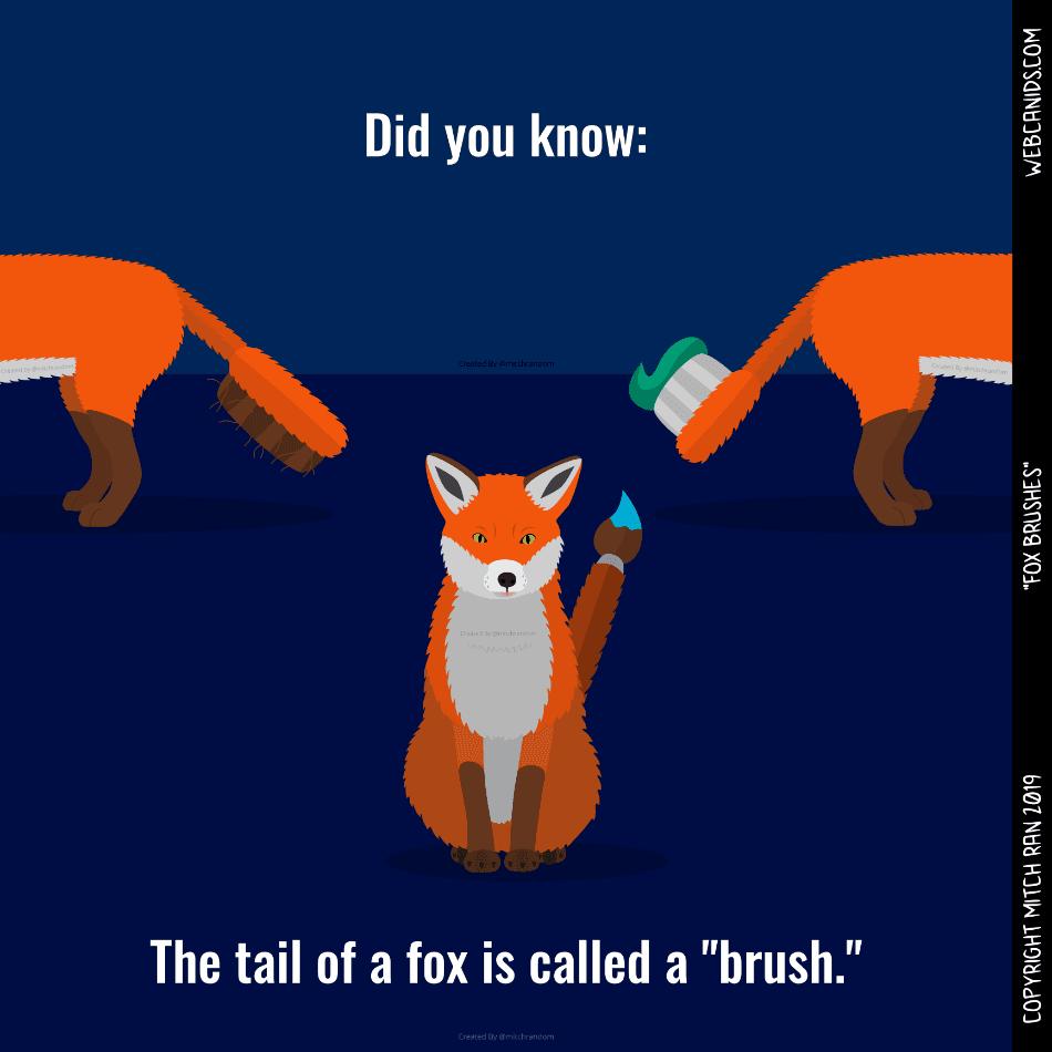 Fox Brushes