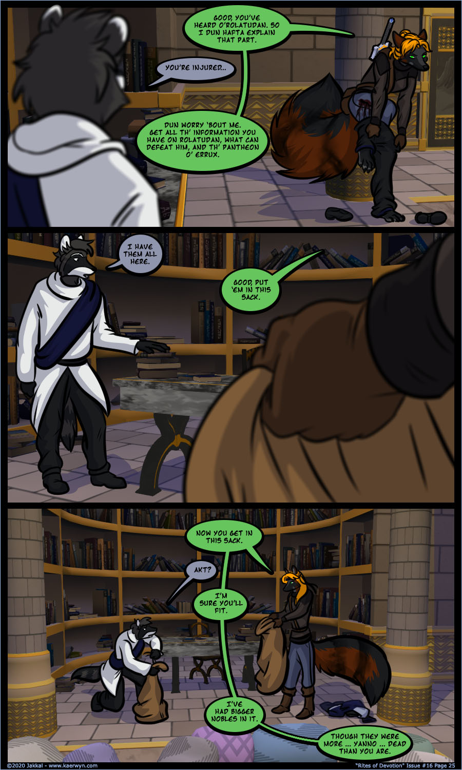 Issue 16 Page 25