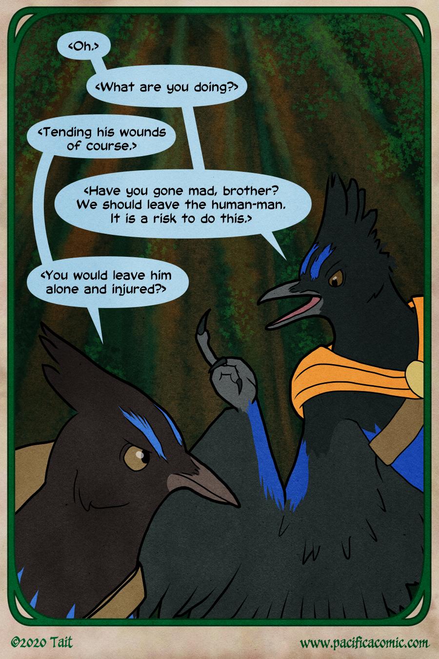 Birds - Page 2