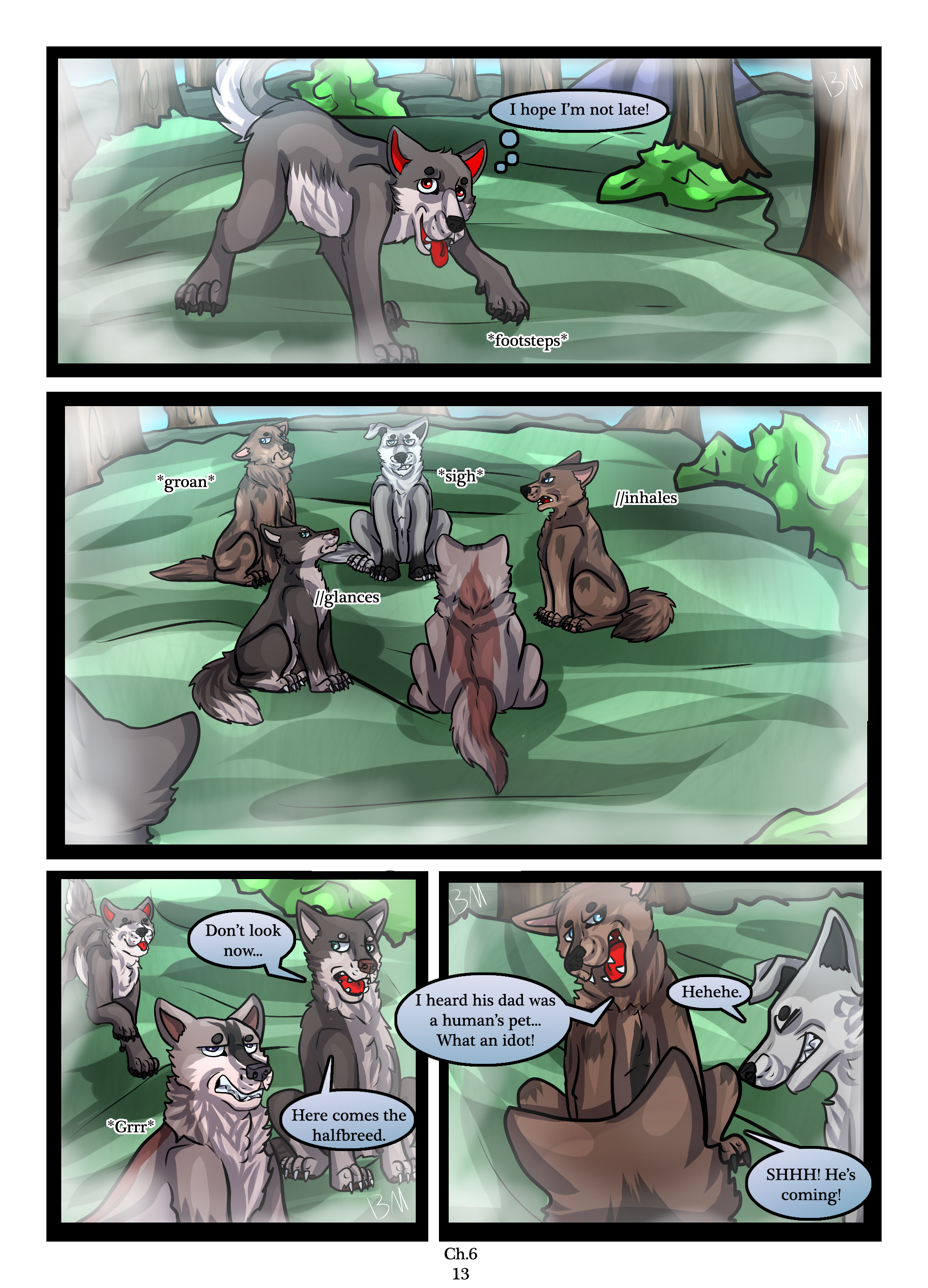Ch.6 page 13