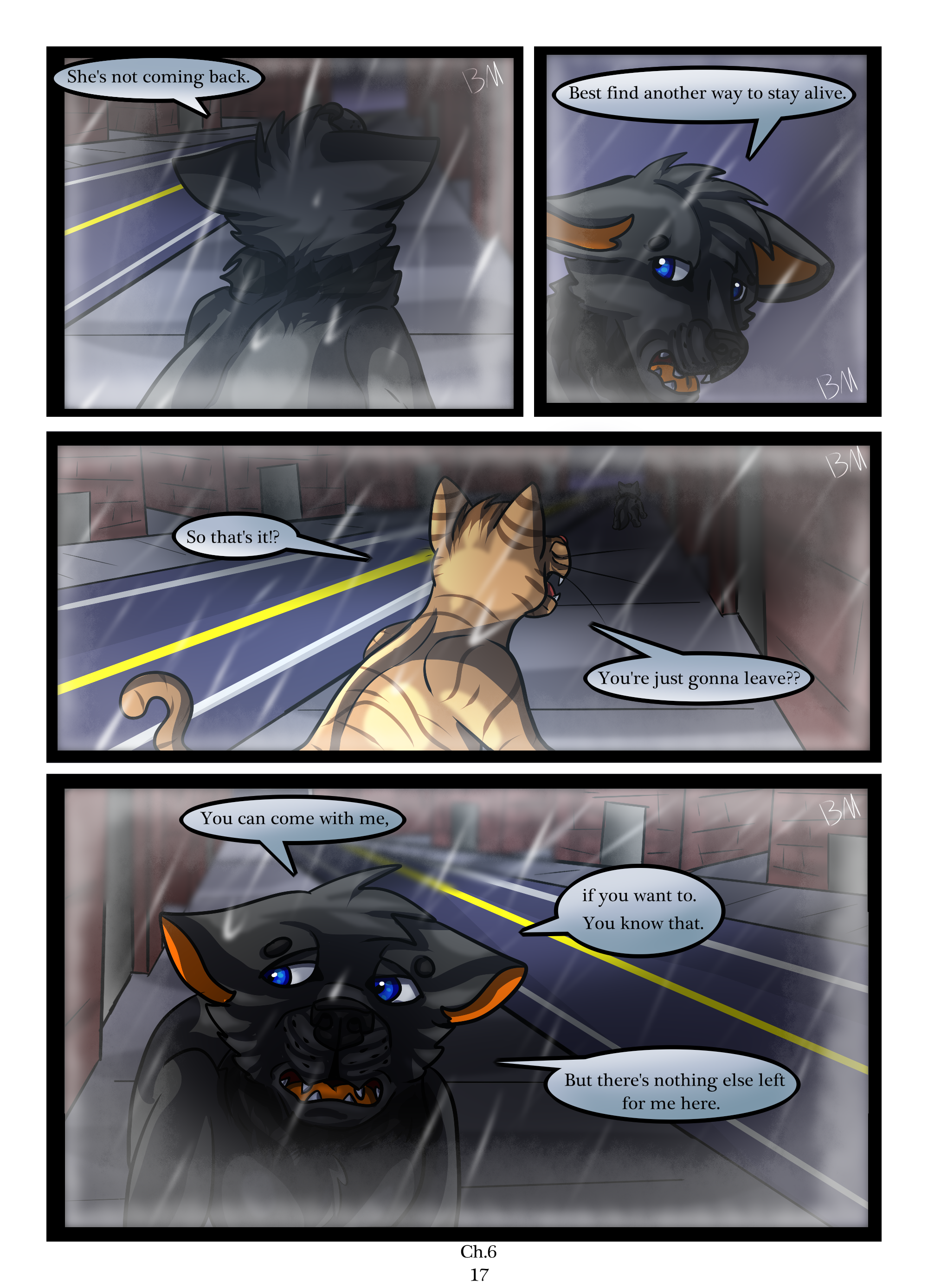 Ch.6 page 17