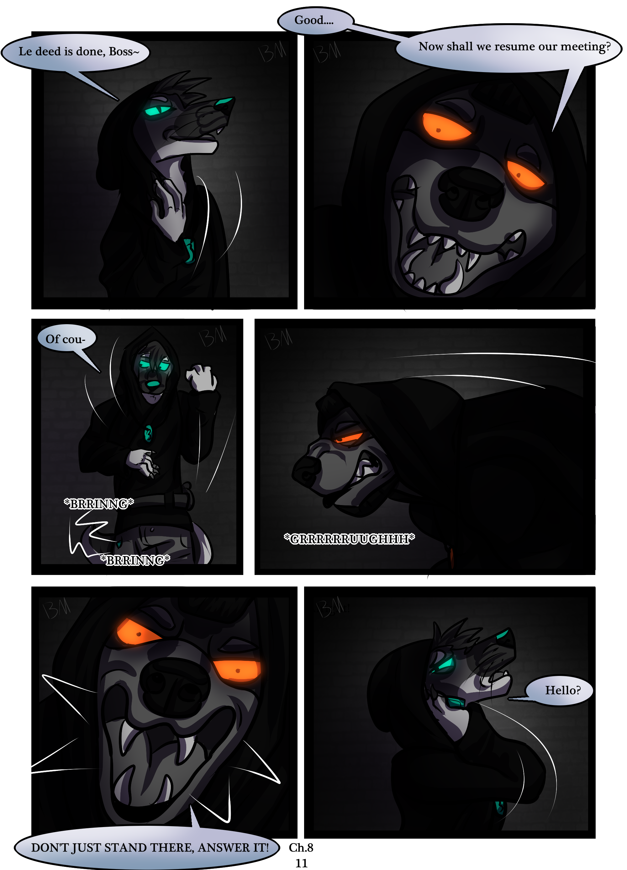Ch.8 page 11