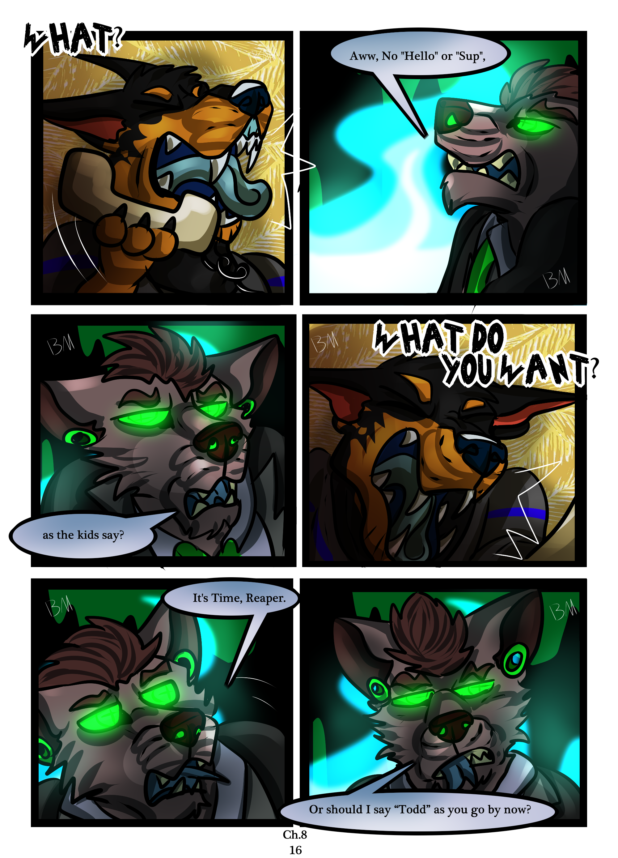 Ch.8 page 16