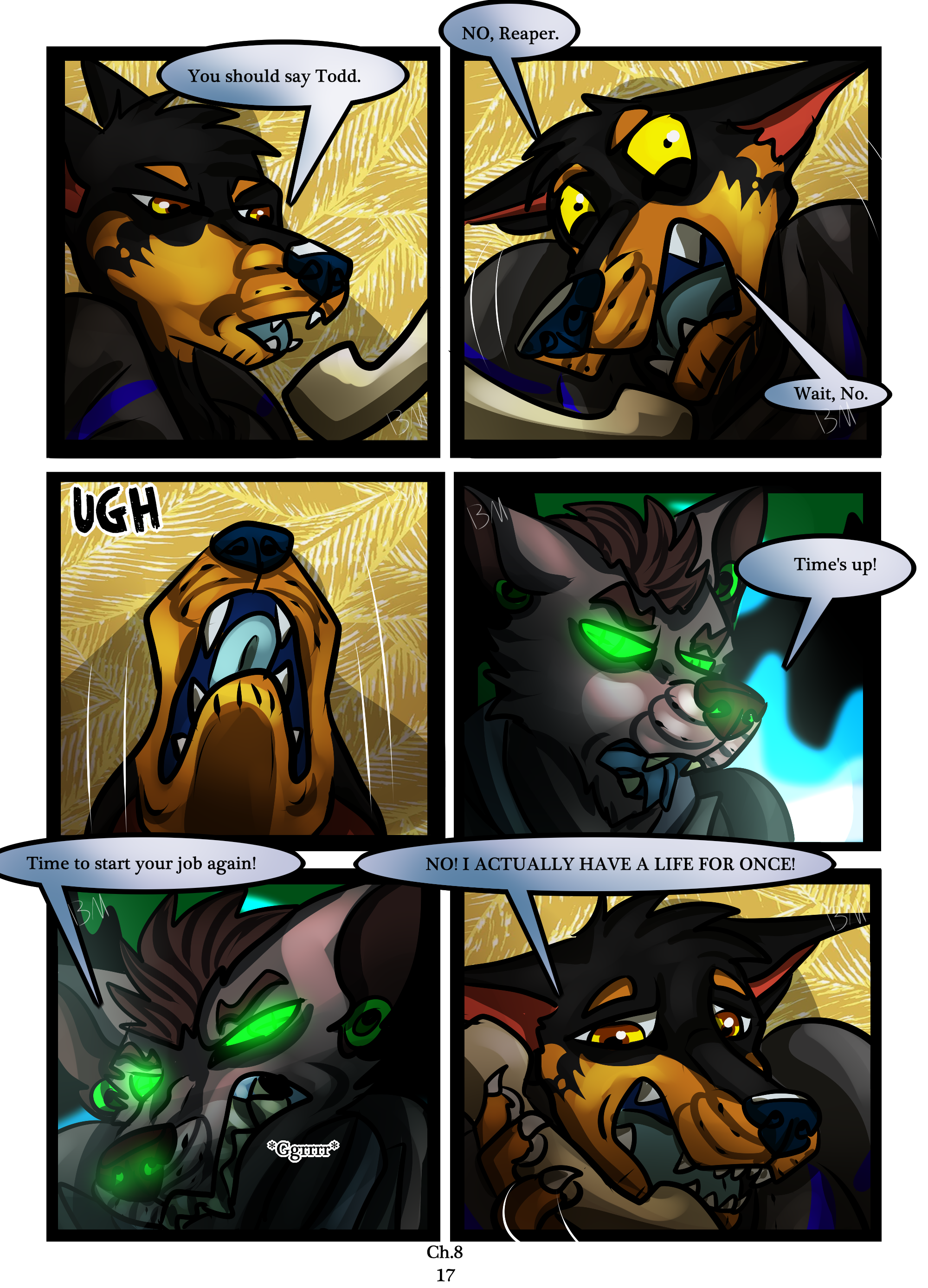 Ch.8 page 17
