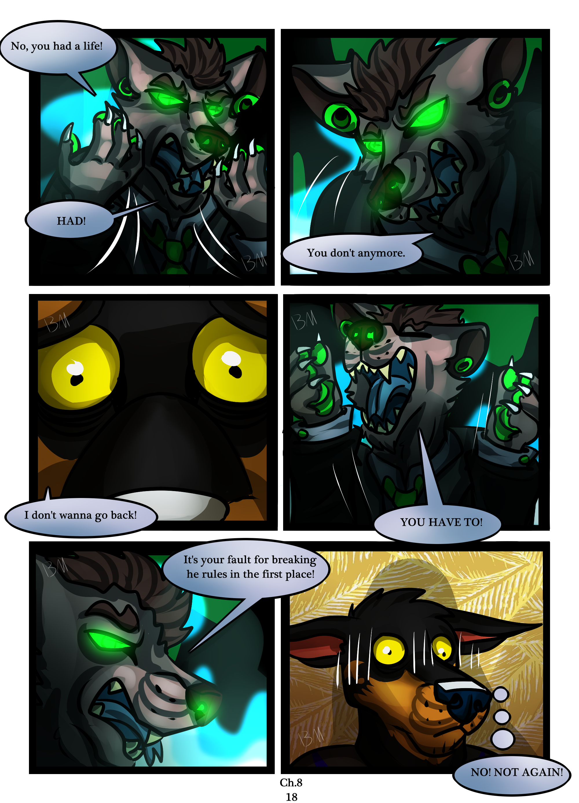 Ch.8 page 18