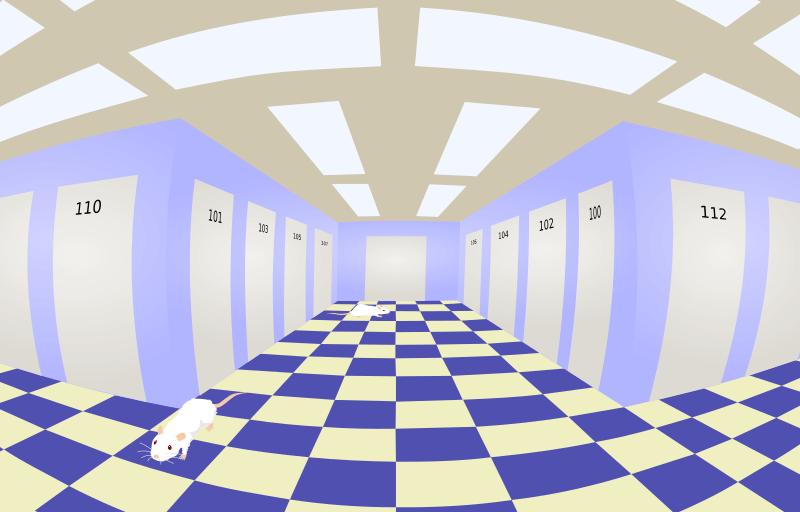 Five-point hallway