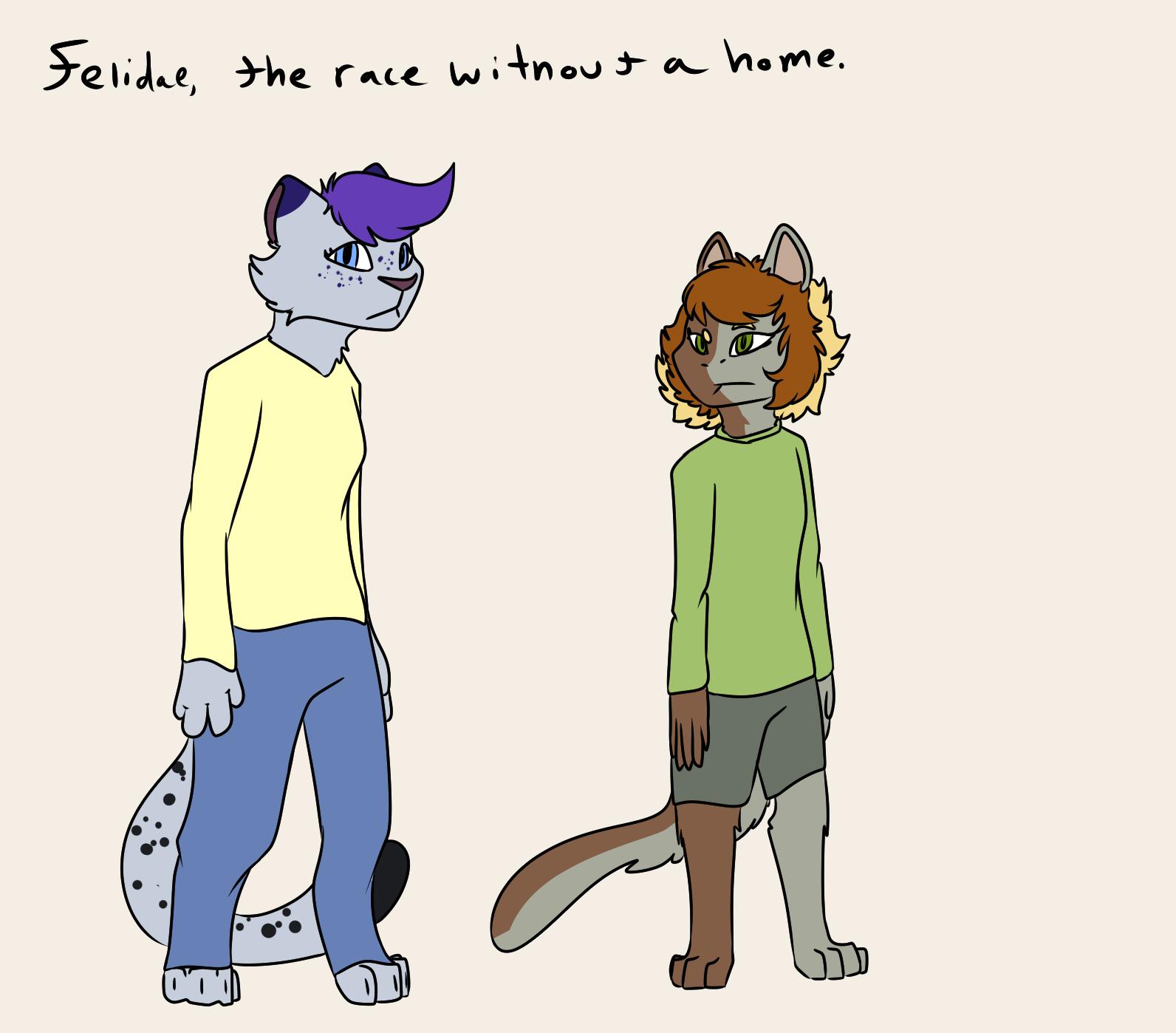 (Extras) Felidae