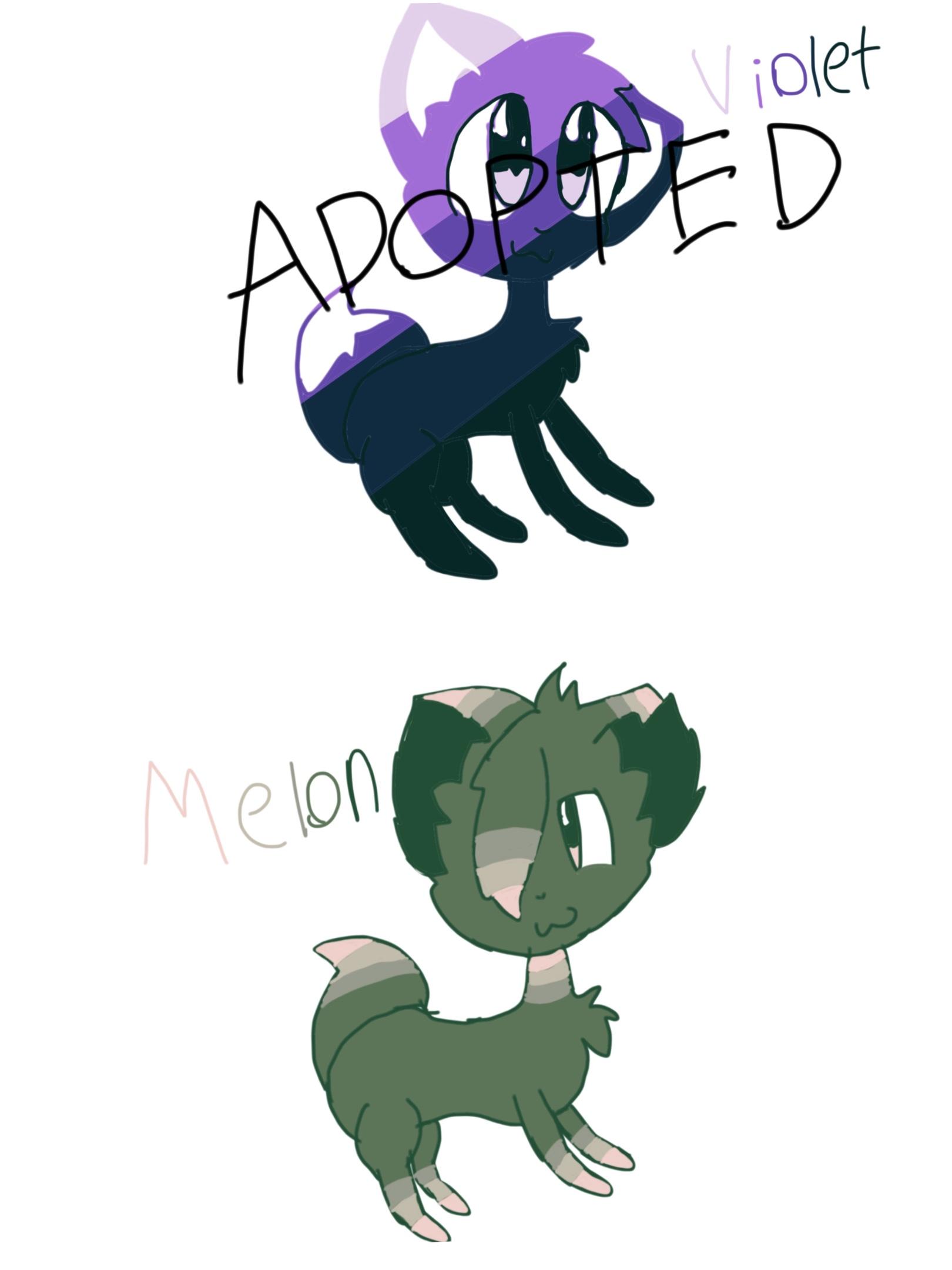 2 Color Palette Fox Adopts!