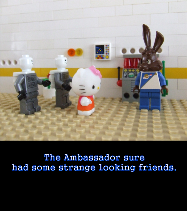 The Ambassador's Friends