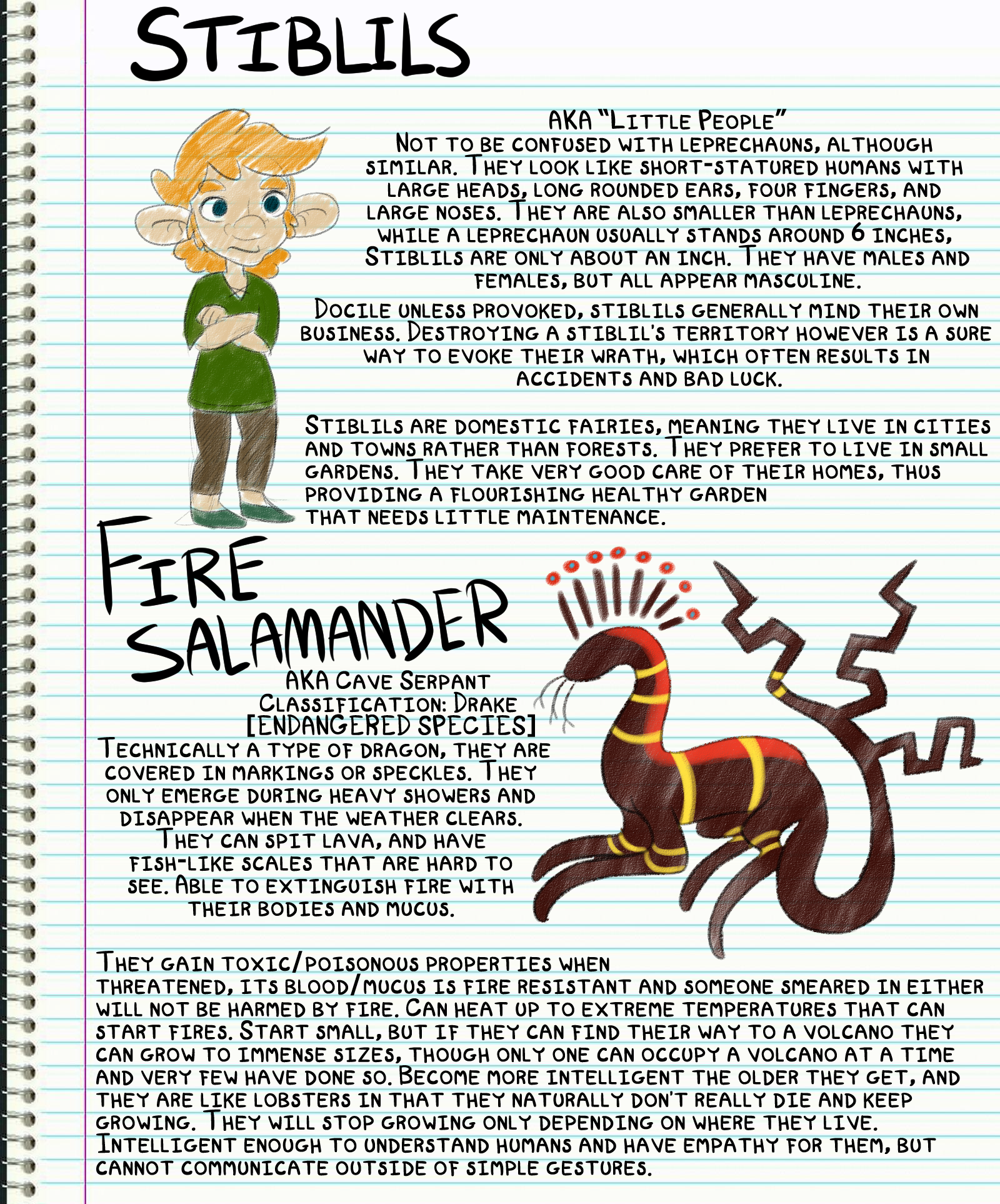 Journal Entry: Salamanders and Stiblils