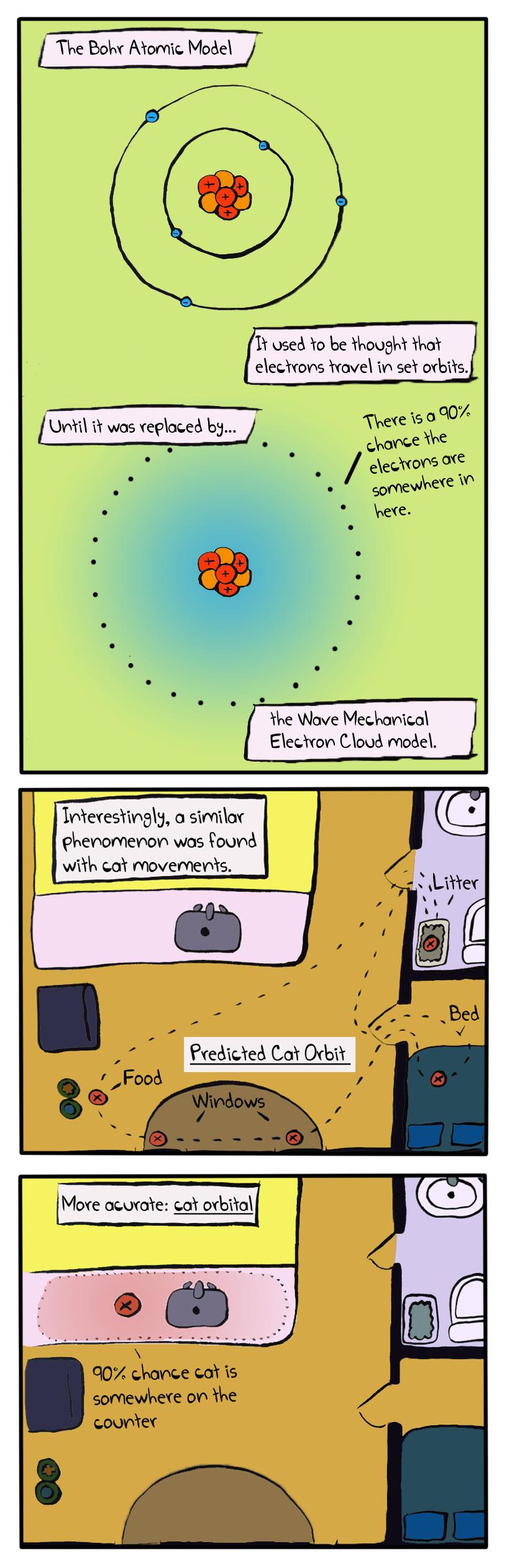 Orbital Cat