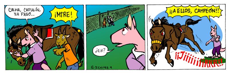 Aventura en el parque - 9