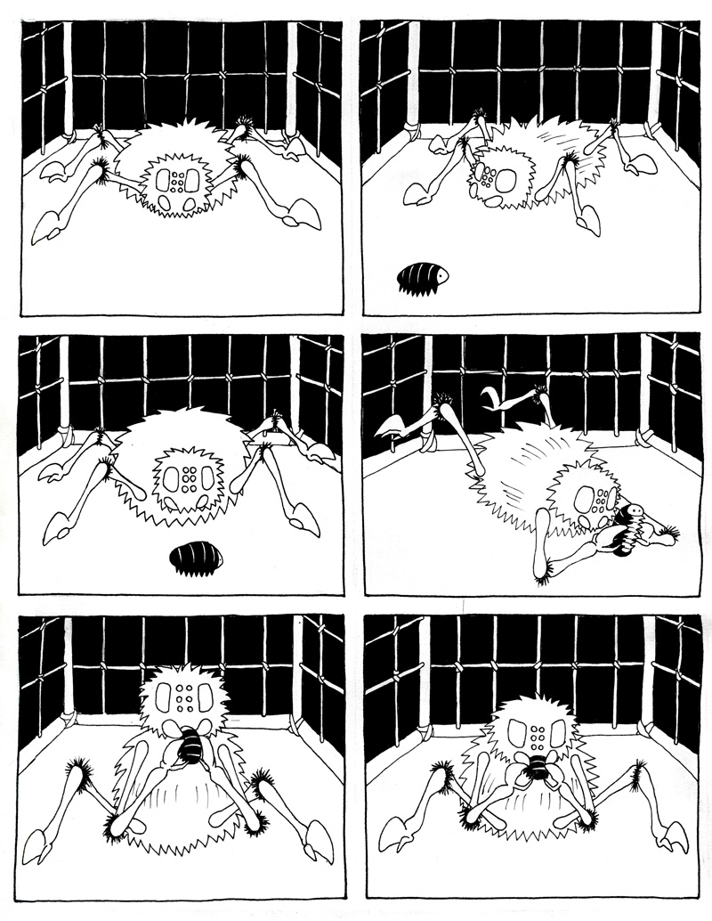 Cages 1.2