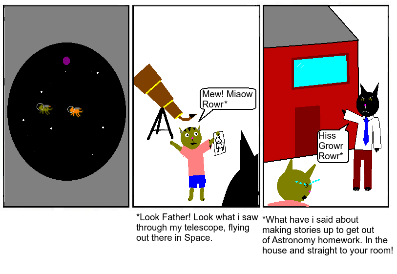 #63 - Cats in Space II