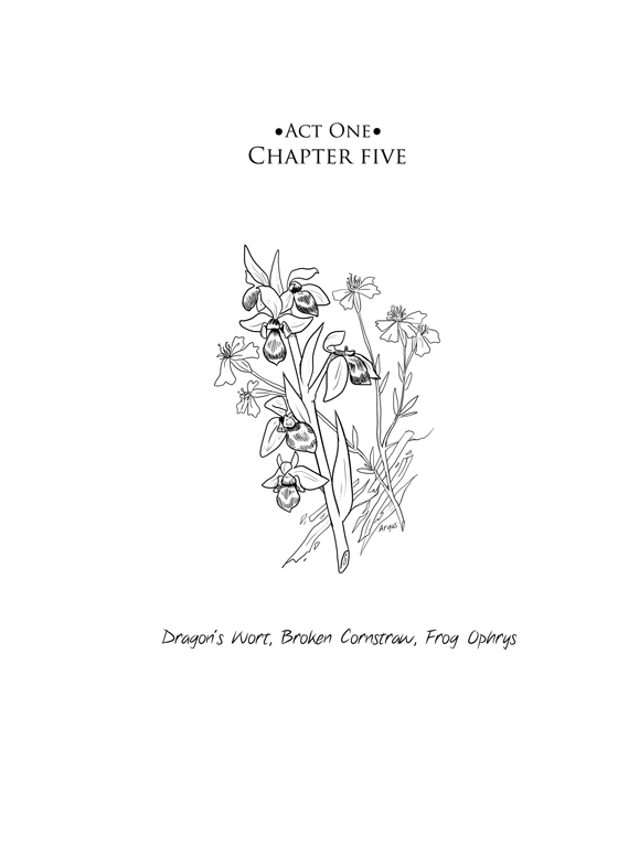 Act one, Chapter Five: 01