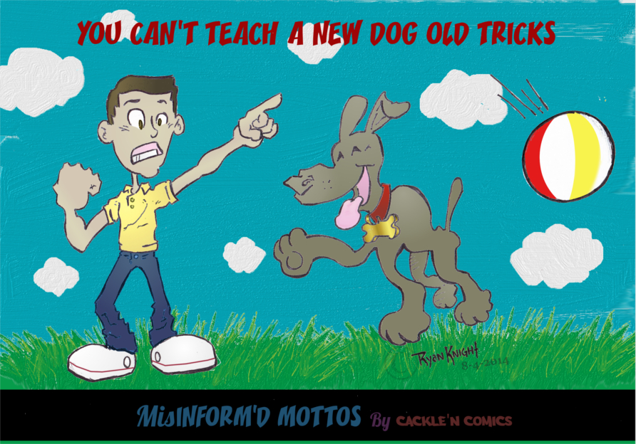You can't teach a new dog old tricks?!?