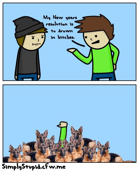 So many dogs