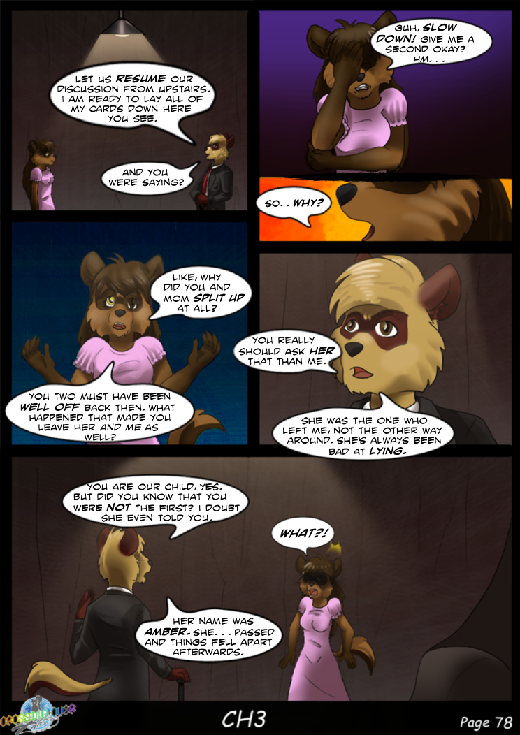 Page 78 (Ch 3)
