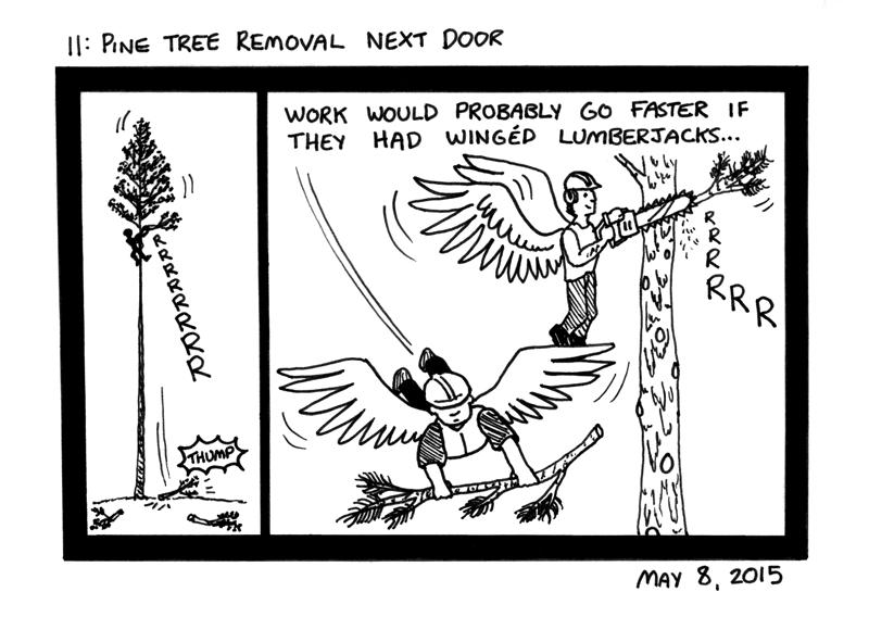 Pine Tree Removal Next Door