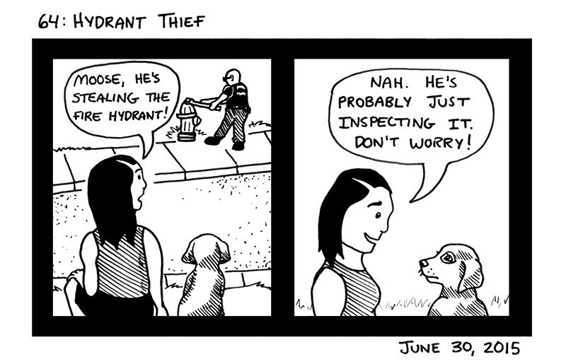 Hydrant Thief