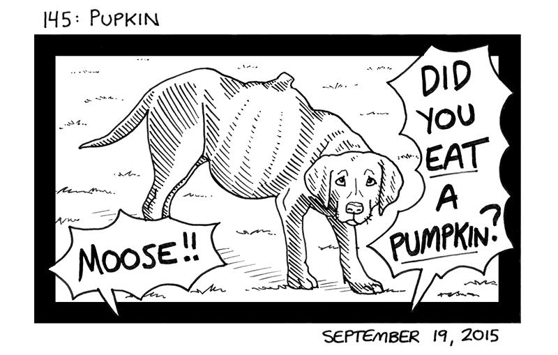 Pupkin