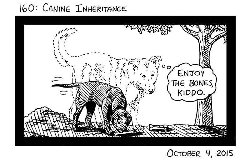 Canine Inheritance
